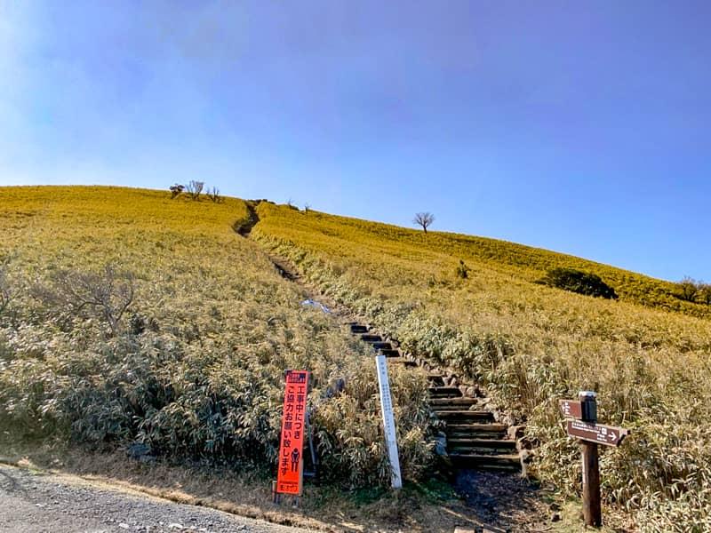 達磨山北側登山口から頂上へ