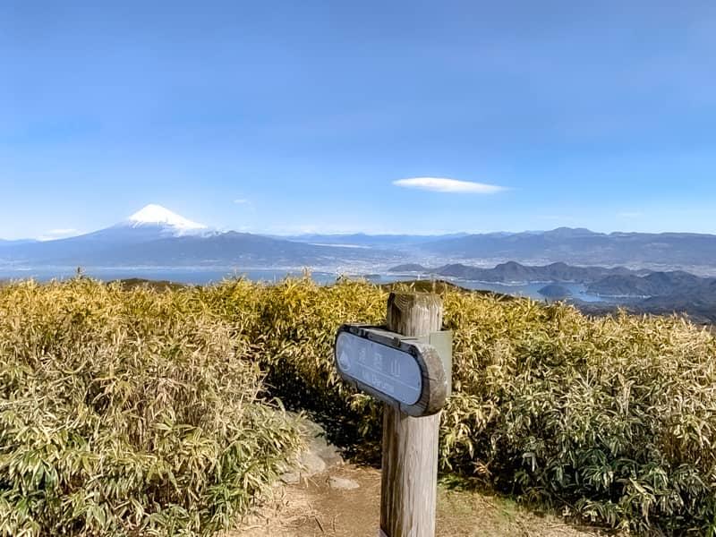 達磨山山頂の景色は本当に絶景です