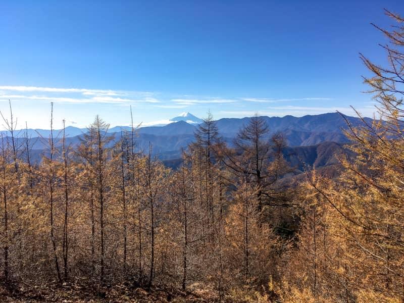 雲取山からの富士山の眺め