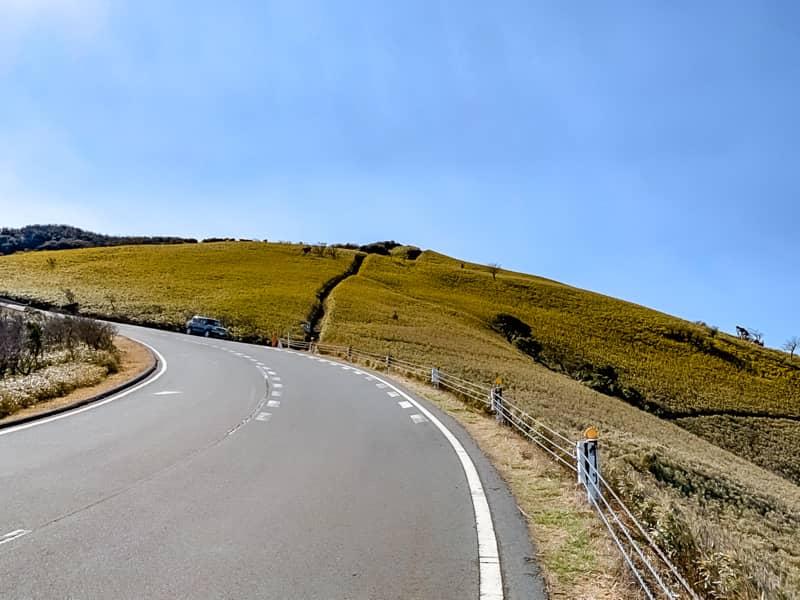 駐車場から達磨山北側登山口まで歩いて5分程度です
