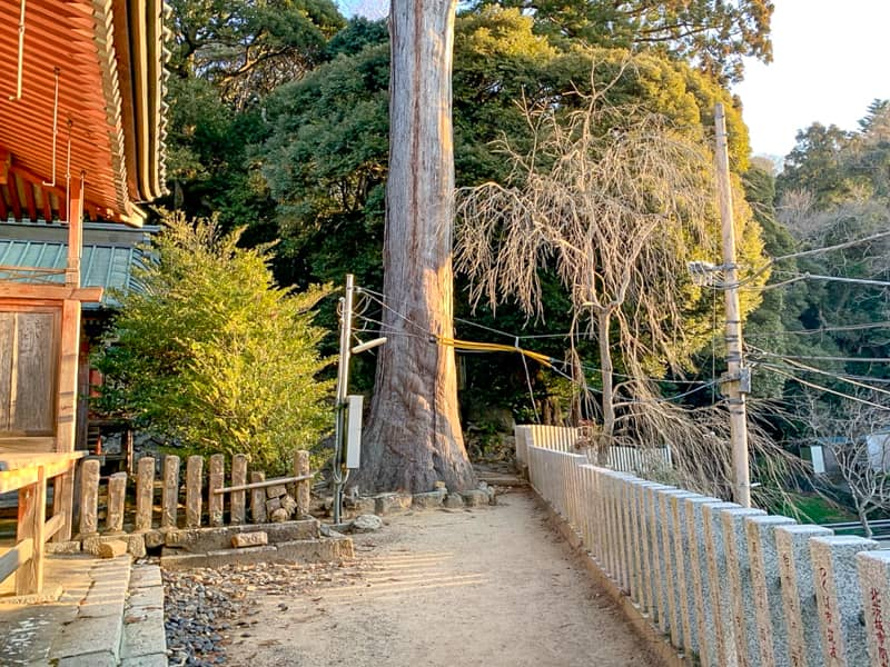 2.筑波山神社拝殿を正面に右側の通路を進みます