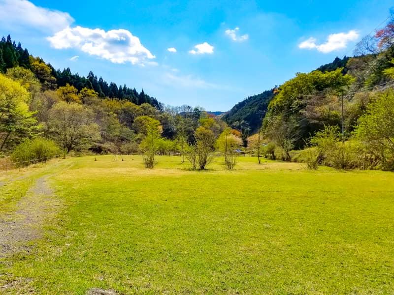 数万匹のホタルが舞い飛ぶ幻想的なキャンプ場!伊豆自然村キャンプフィールド