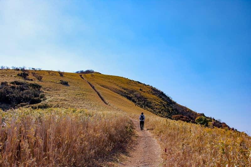 がっつり登山を楽しみたいなら縦走コースがある