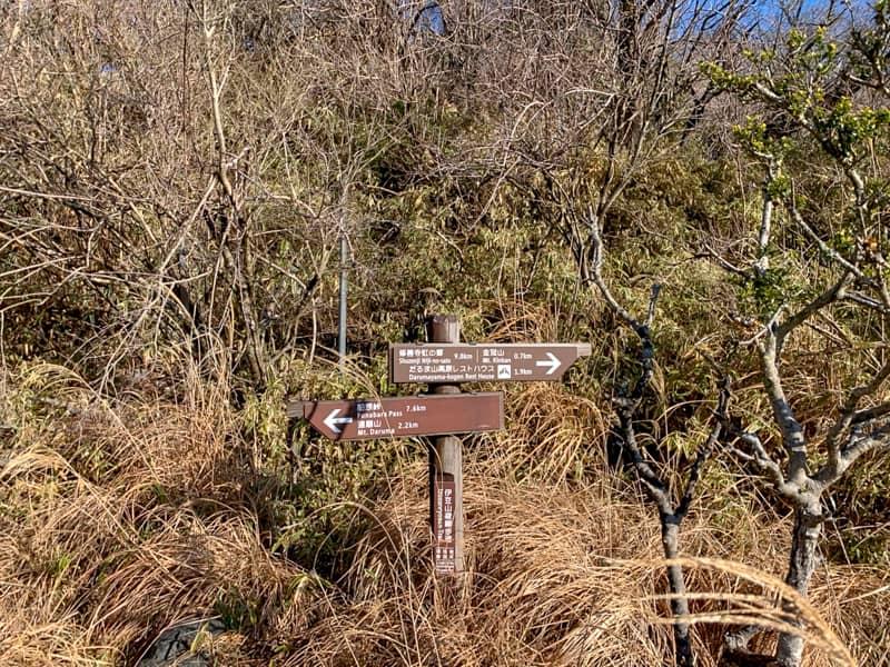 こちらが登山口です。