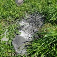 「焚き逃げ」が横行?神奈川県の無料キャンプスポット「中津川河川敷」で清掃活動を実施