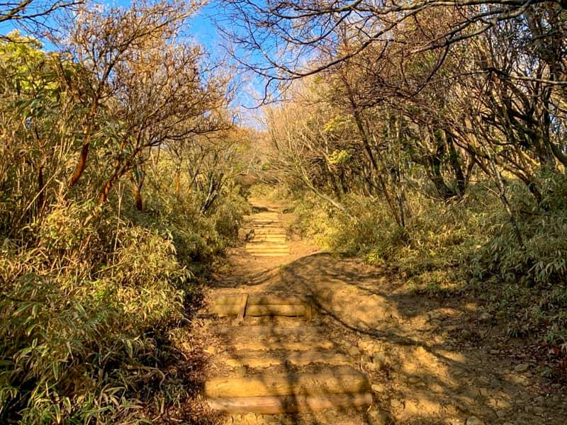 先ほどのように芝生の緩やかな坂道は少なくなり