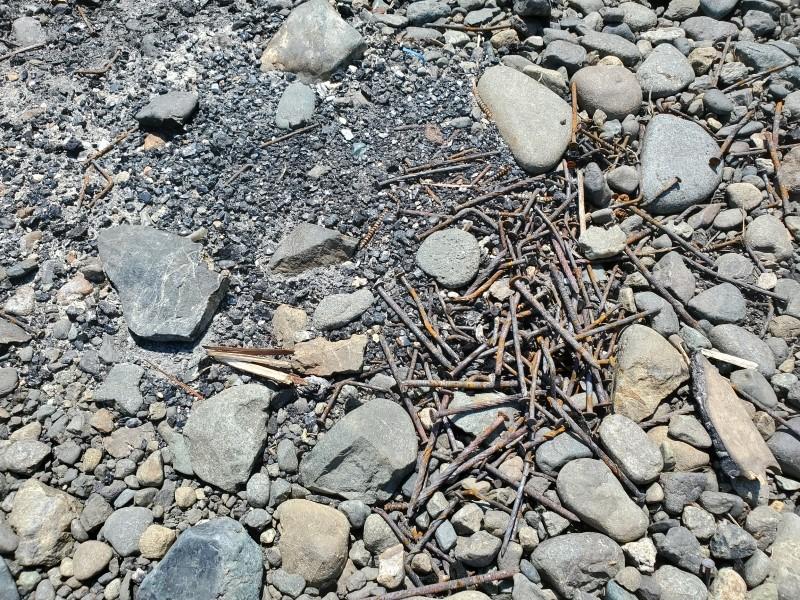 焚き逃げ跡に大量の釘が放置