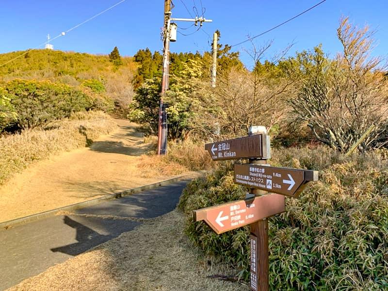 登山口から30分ほど歩くと分岐に到着します