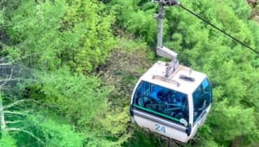 ゴンドラで登れる「入笠山」は花が美しいファミリーハイキングにオススメの山です