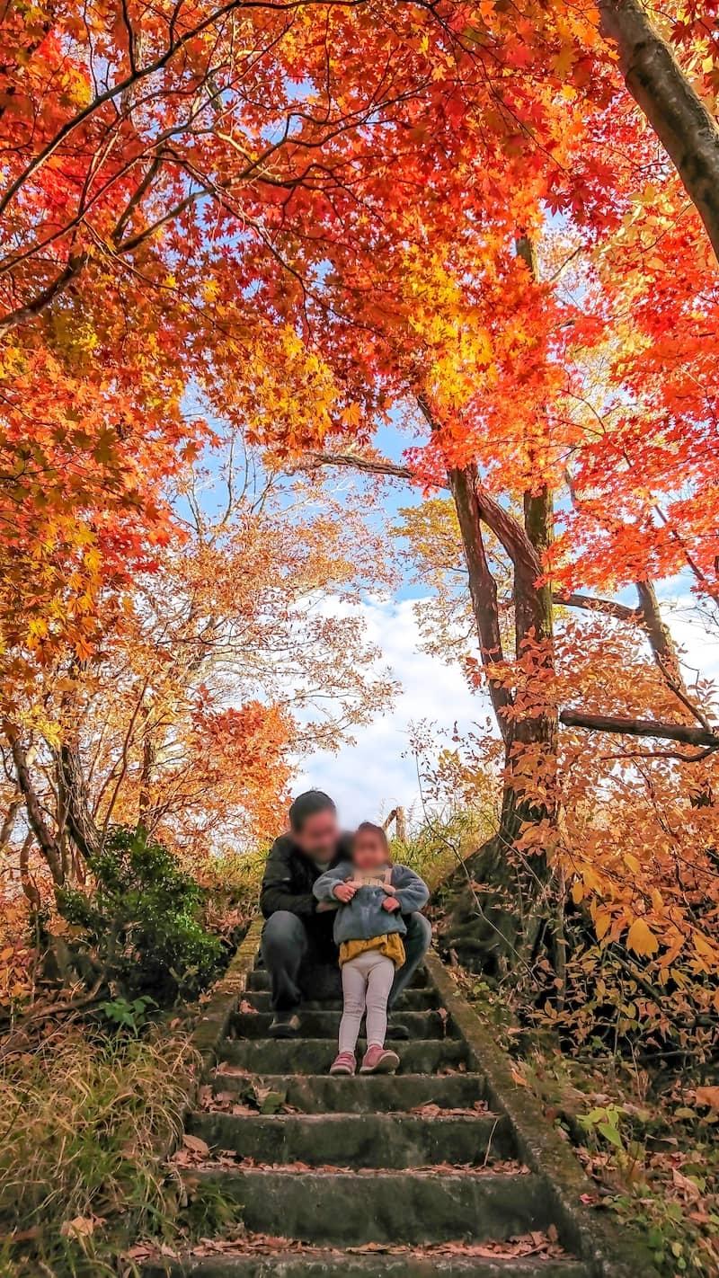 タデ原湿原の紅葉