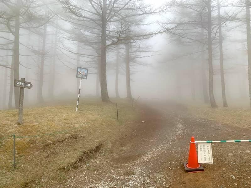 マナスル山荘からは本格的な登山道が続きます
