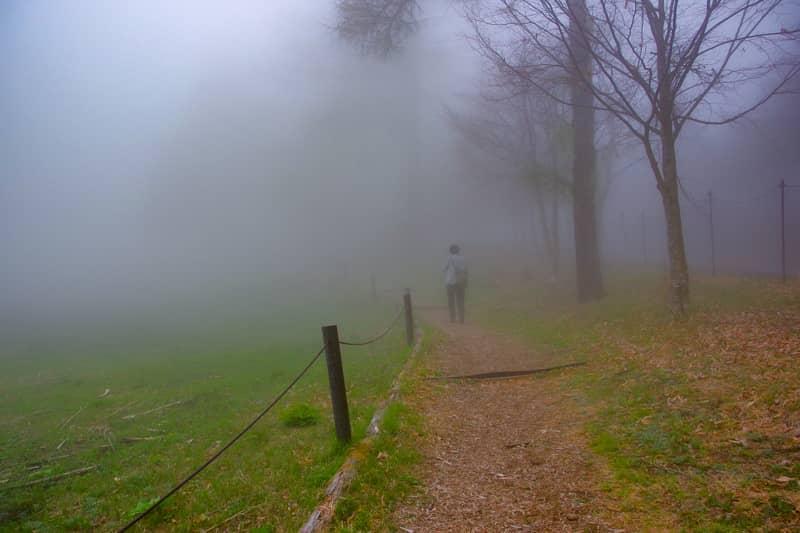 入笠山のハイキングコースは
