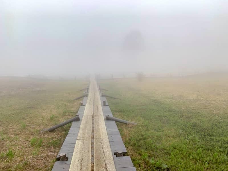 入笠湿原のメイン会場