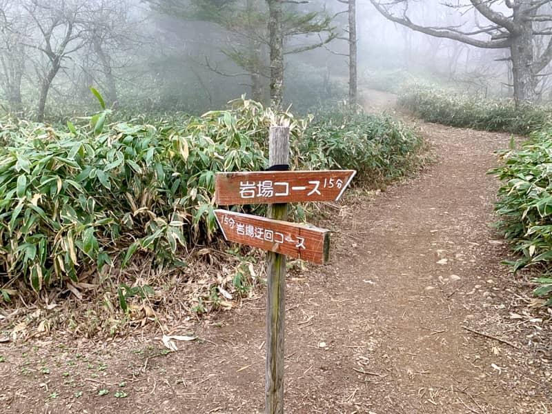 岩場コースと迂回コースの分岐