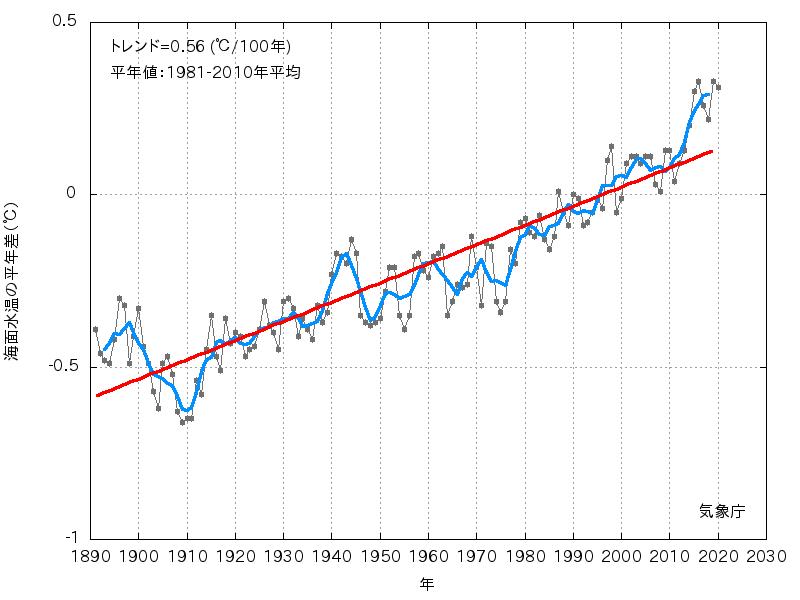 海面水温の長期変化傾向