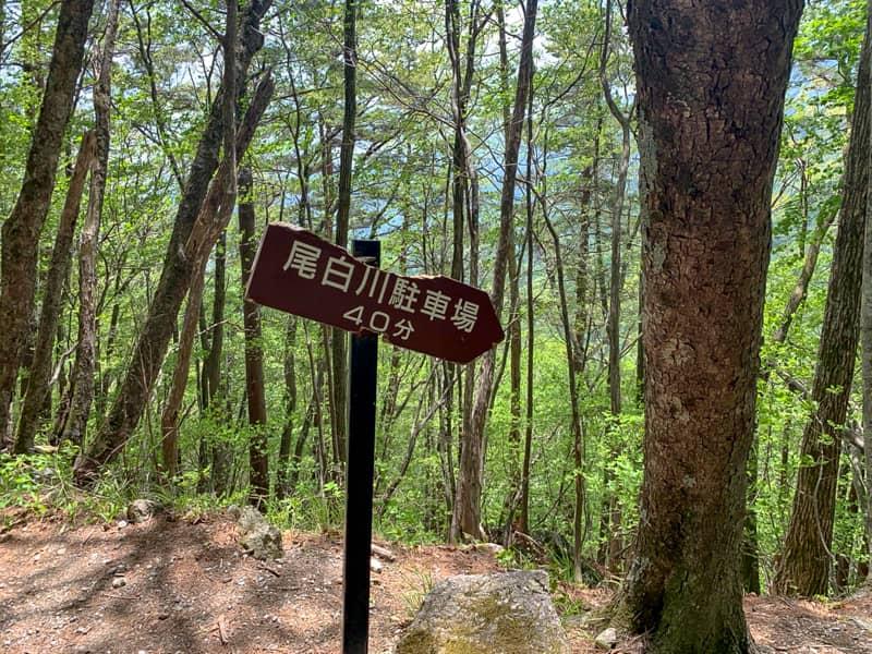矢立石登山口に合流