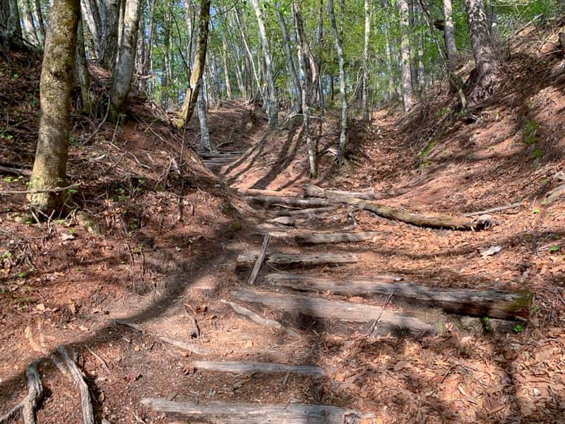 良くある登山道