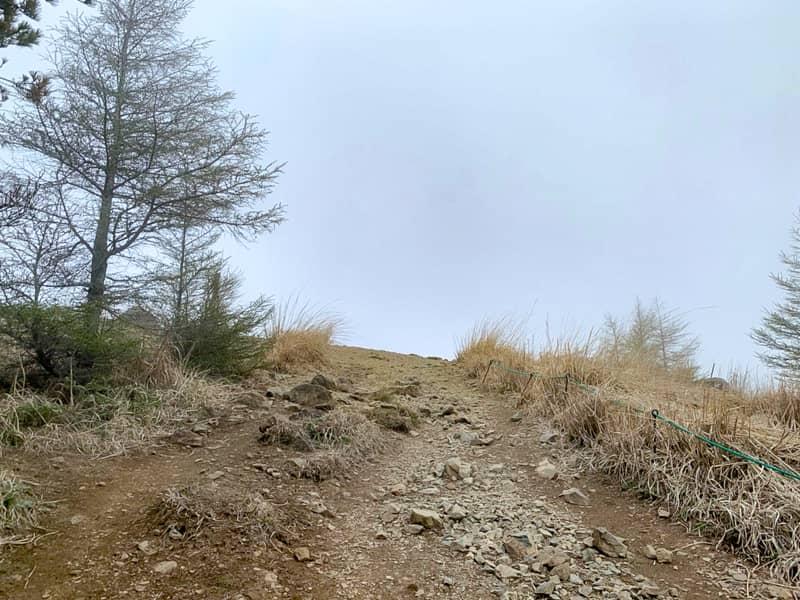 15分ほど登ると山頂が見えてきました