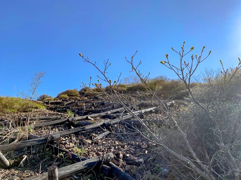 ザレ場に乱立した木の階段群