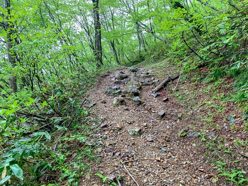 地味な登山道で全体的に急な上り