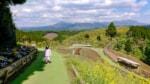 子どもと一緒に楽しめる阿蘇くじゅう国立公園のオススメスポットを紹介します