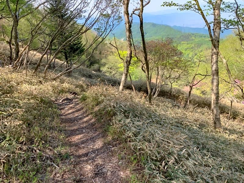急登も無く、思った以上に整備された登山道