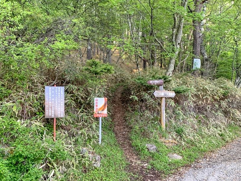 旧道なる登山道があります