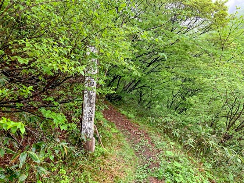 登山口から三国峠御坂三社神社を目指す