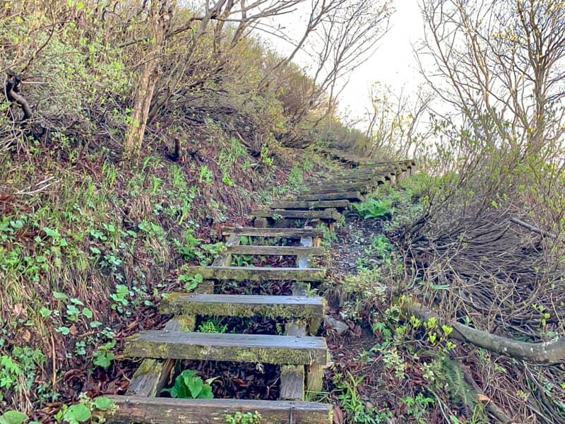 階段が滑りやすくて危険