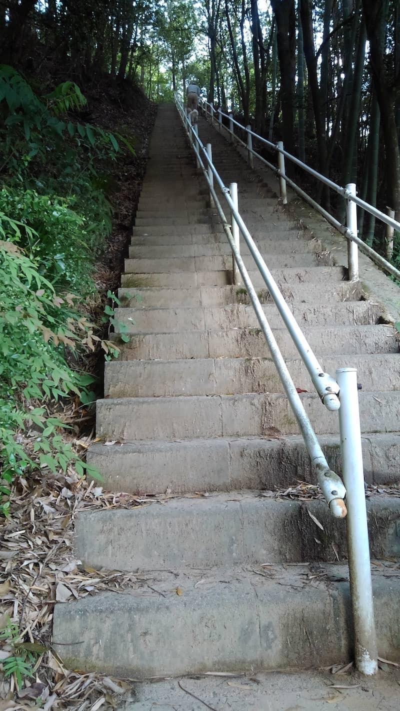 黒井城跡階段