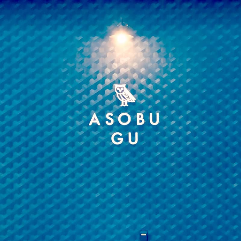ASPBUGU16