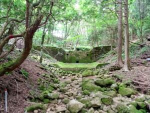 【登山初心者におすすめ】静岡県の百名山「天城山」に登ってきました
