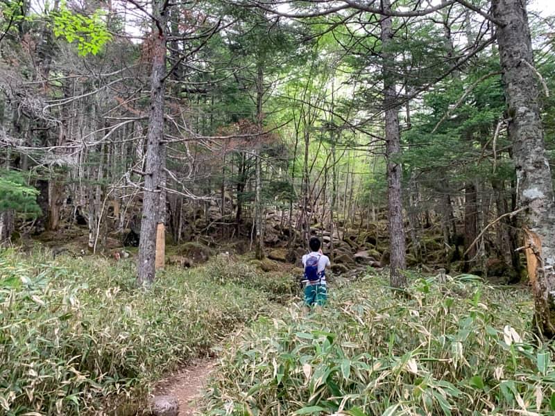 岩場を登りきると少しだけ平坦な道と