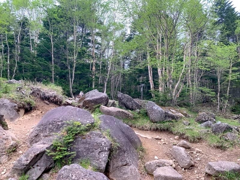 長い長い岩の登坂の終わりが見えてきました。