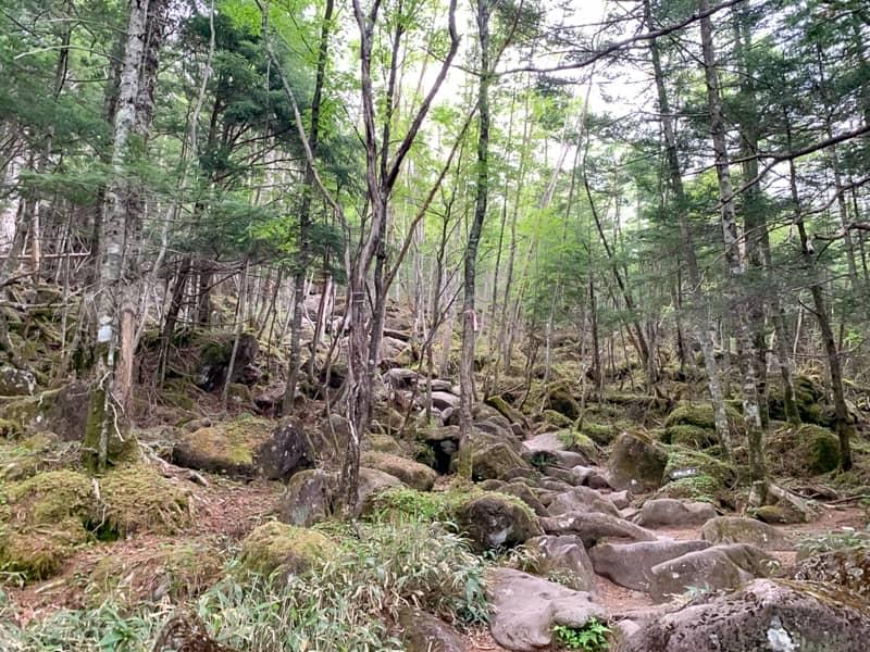 1回目の岩場の急登とは岩の大きさのレベルが桁違いになります