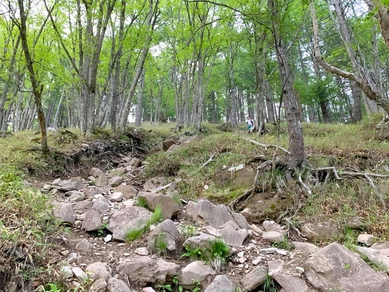 1回目の岩場の急登を登る