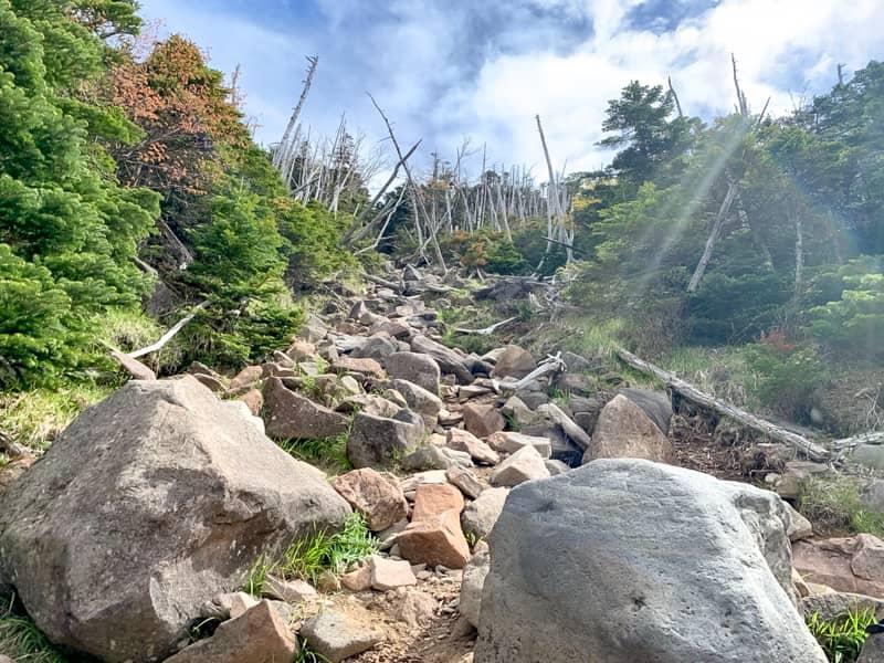 300メートルほど登ったあたりから