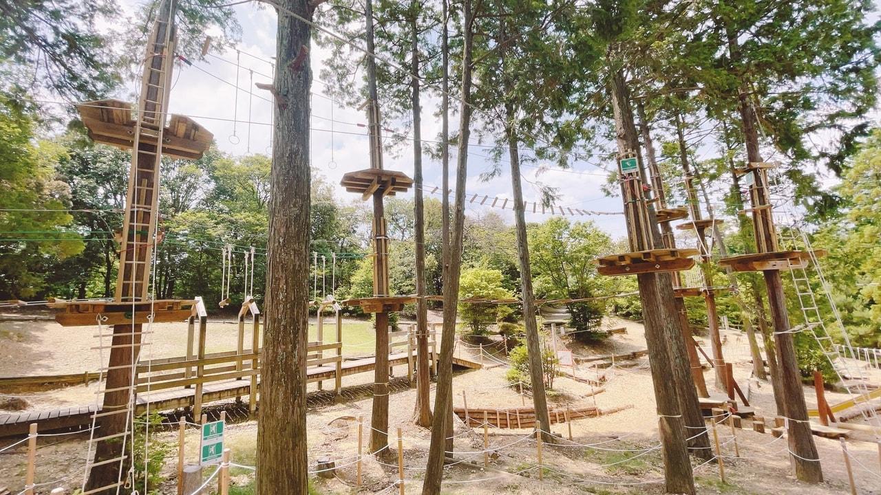 TOMOSHIBI CAMP5