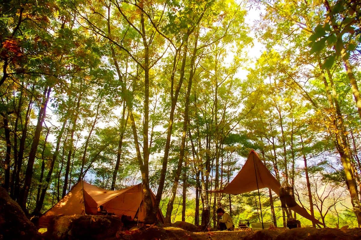 関東近郊で静かなキャンプを楽しめるプライベート感が抜群なキャンプ場10選