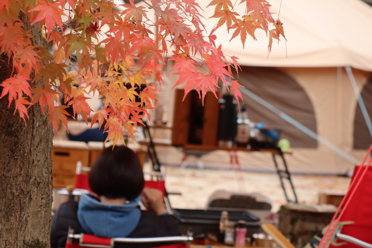 秋キャンプのイメージ写真