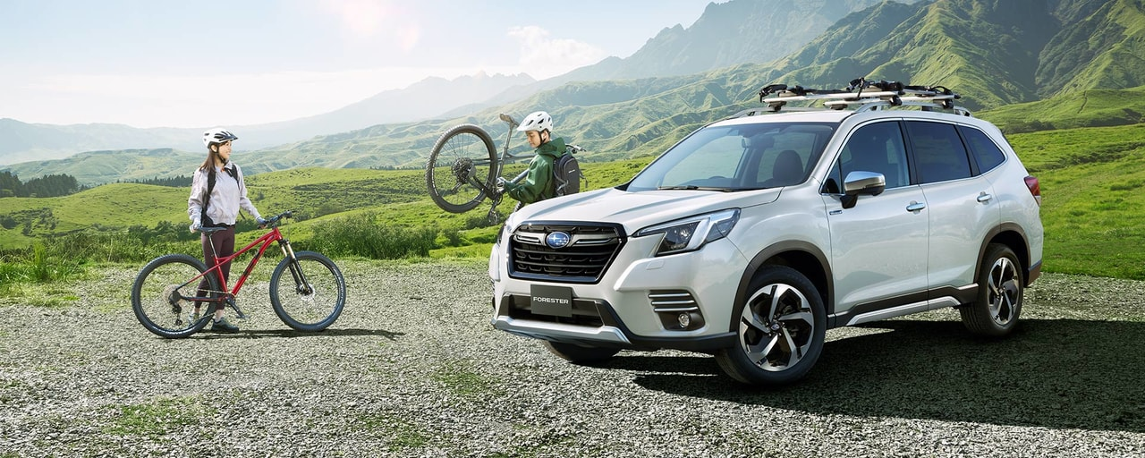 forester (2)