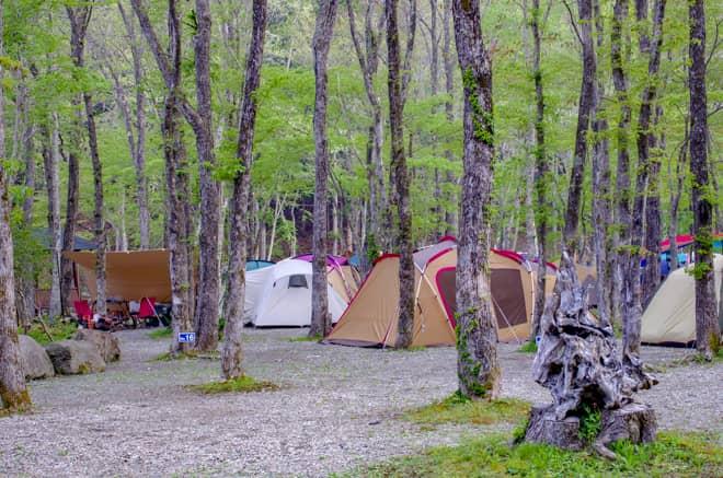 ナラ入沢渓流釣りキャンプ場2