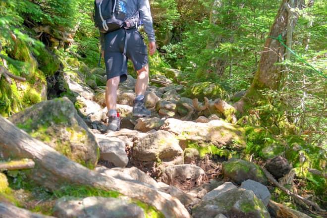 八ヶ岳の魅力を簡単に体験できる初心者にお勧めの山です