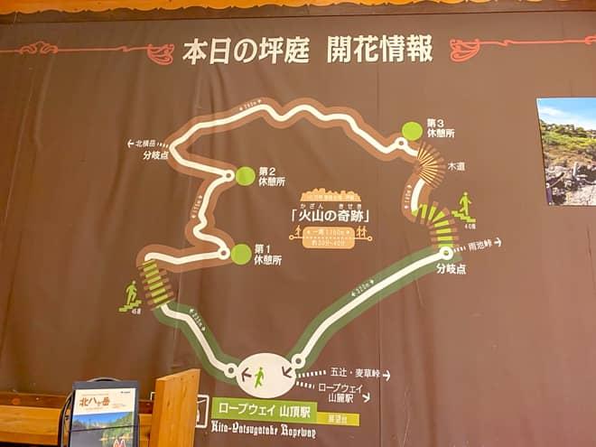 坪庭の周回コースの途中に北横岳登山口がある