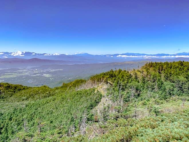 山頂からは「縞枯れ現象」をはっきりと見下ろすことが出来ます