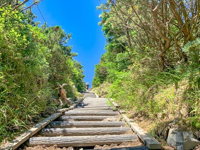 山頂手前に差し掛かると木製の階段が続きます