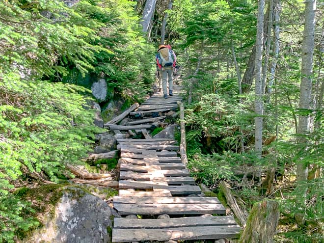 足場が悪い箇所は木製の階段や橋が整備されている