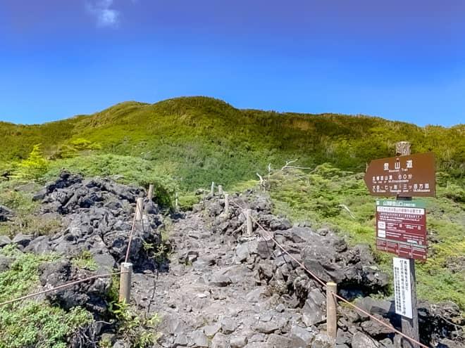 10分程歩くと、北横岳の登山コースの分岐に到着