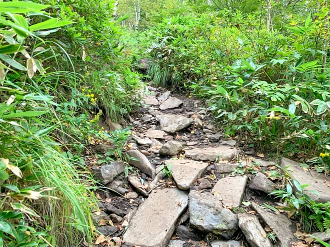 段々と岩の露出が激しくなり、足に負担がかかります