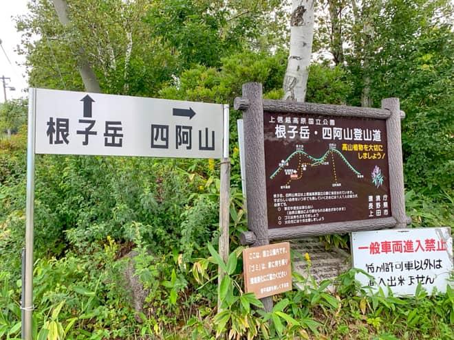 菅平牧場登山口からは根子岳と四阿山に行くルートに分かれます